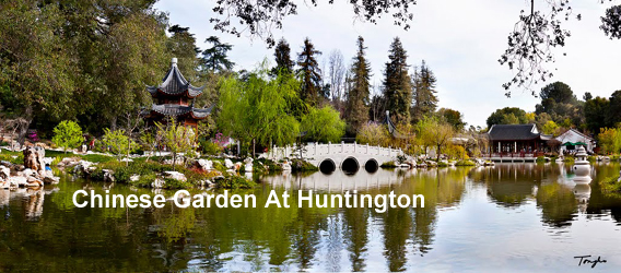 The Chinese Garden at The Huntington Tour