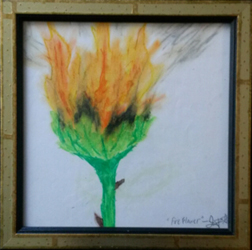 Fire Flower Oils & Graphite Art by Lucy Jane